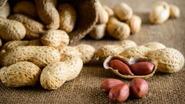 alternatives of milk - Groundnuts