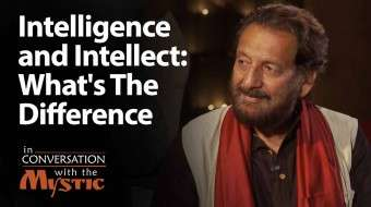 Intelligence and Intellect: What's The Difference