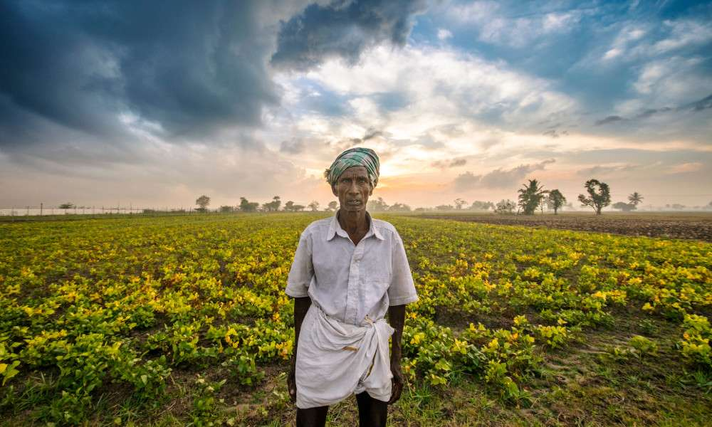 farmers-can-save-tamil-nadu-from-drought-isha-blog-post-farmer-standing