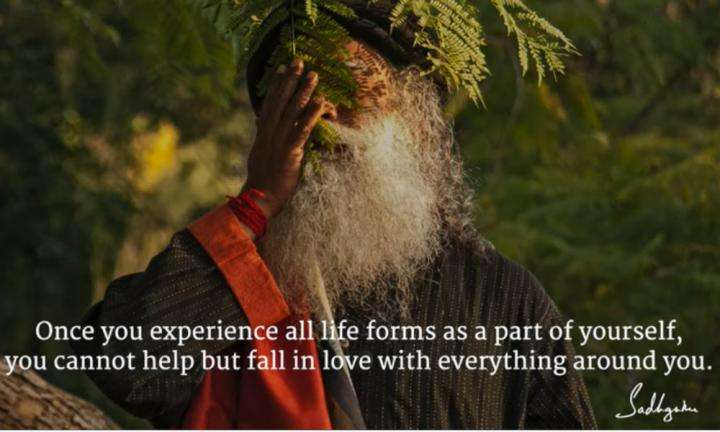 Sadhguru Wisdom Video | Daily Wisdom | Know Love, Not of Relationships, But of Profound Inclusion of Everything.