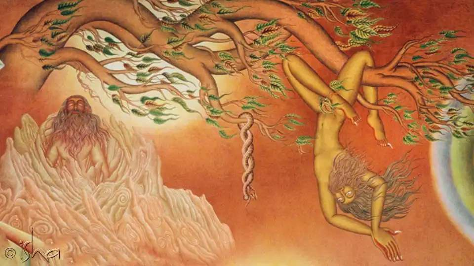 Cleanse your body by cleansing of the five elements